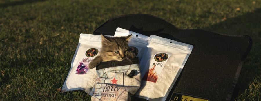 Joe's Valley Bouldering Festival 2016 Recap